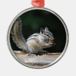 Eating Chipmunk Christmas Ornament