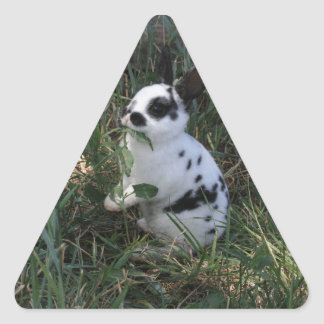 Eating Greens Triangle Sticker