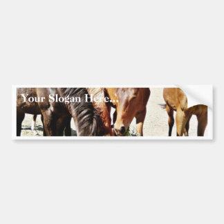 Eating Horses Bumper Sticker