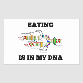 Eating Is In My DNA DNA Replication Humor Sticker
