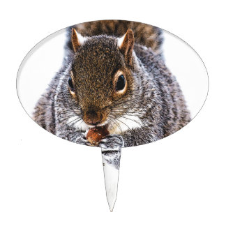 Eating Squirrel Cake Topper