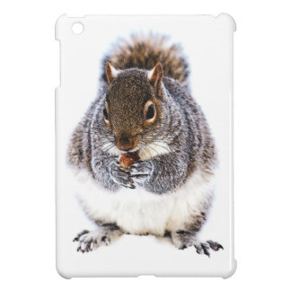 Eating Squirrel Case For The iPad Mini