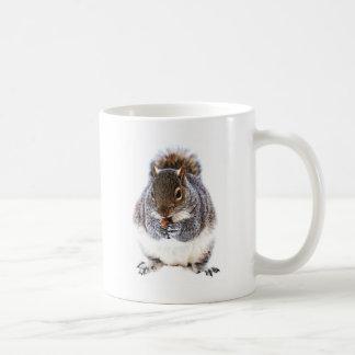 Eating Squirrel Coffee Mug