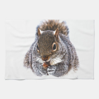 Eating Squirrel Kitchen Towel