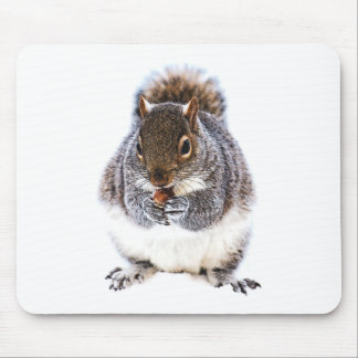 Eating Squirrel Mouse Pad