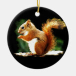 Eating Squirrel Ornament
