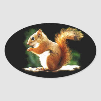 Eating Squirrel Oval Sticker