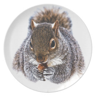 Eating Squirrel Plate