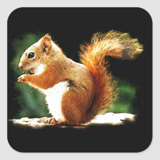 Eating Squirrel Square Sticker