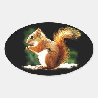 Eating Squirrel Sticker