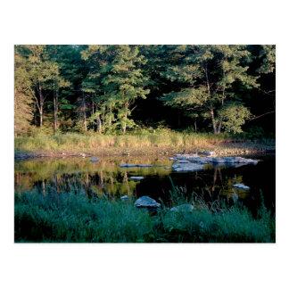 Eau Clair Dells Postcard