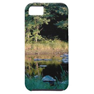 Eau Claire Dells Case For iPhone 5/5S