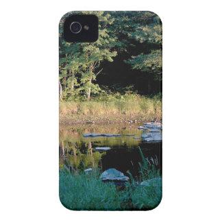 Eau Claire Dells iPhone 4 Case-Mate Case