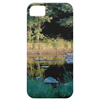 Eau Claire Dells iPhone SE/5/5s Case
