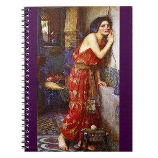 Eavesdropping 1909 notebook