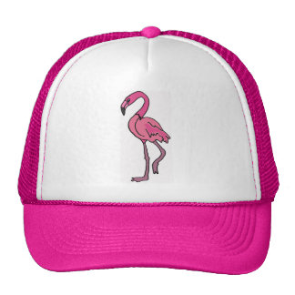 EB- Pink Flamingo hat
