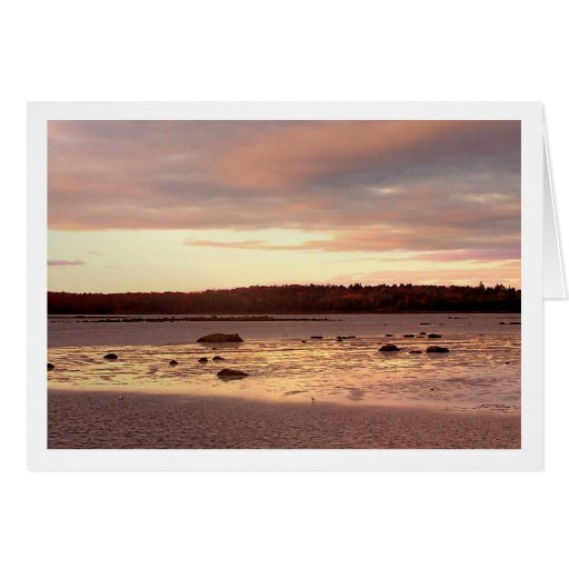 Ebb Tide in the Morning Stationery Note Card
