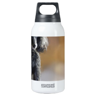 Ebony Insulated Water Bottle