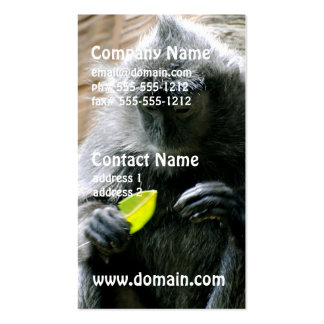 Ebony Langur Monkey Double-Sided Standard Business Cards (Pack Of 100)