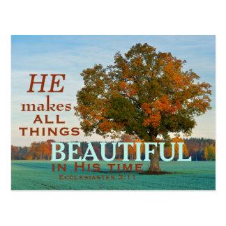 Ecclesiastes 3:11 All things beautiful Postcard