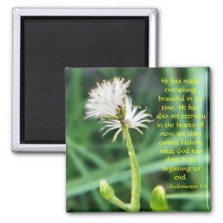 Ecclesiastes 3:11 magnet