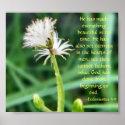 Ecclesiastes 3:11 print print