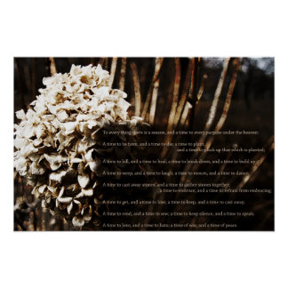 Ecclesiastes 3:1-8 poster