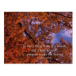 Ecclesiastes 3:1 To every thing there is a season Post Card