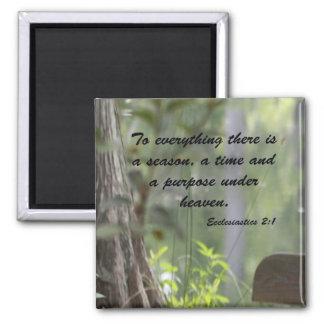 Ecclesiastics 2:1 magnet