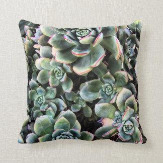 Echevaria Succulents Throw Pillow