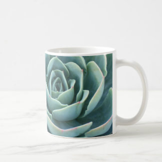 Echeveria coffee mug