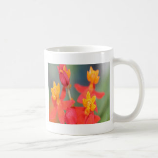 Echeveria Succulent Red and Yellow Flower Coffee Mug