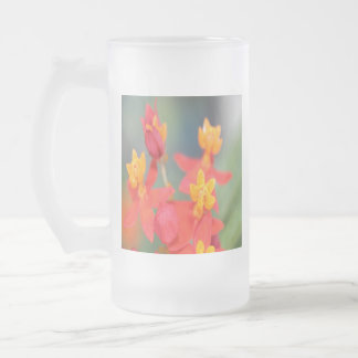 Echeveria Succulent Red and Yellow Flower Frosted Glass Beer Mug
