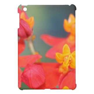 Echeveria Succulent Red and Yellow Flower iPad Mini Cover