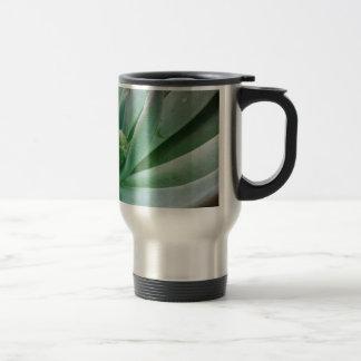 Echeveria 'Tippy' 15 Oz Stainless Steel Travel Mug