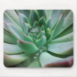 Echeveria 'Tippy' Mouse Pad
