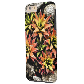 ECHEVIERA, STAR-SHAPED, GREEN, YELLOW AND SALMON-C TOUGH iPhone 6 PLUS CASE