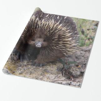 Echidna australiano adorable papel de regalo