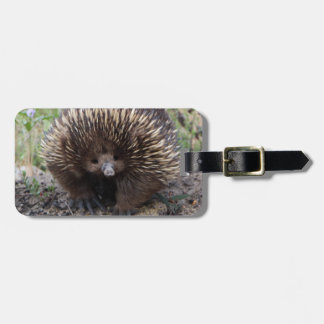 Echidna or Spiny Anteater Australia Tags For Luggage
