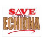 Echidna Save Postcard
