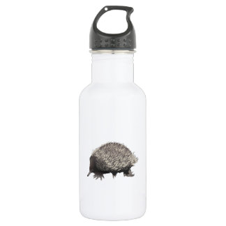 Echidna Stainless Steel Water Bottle