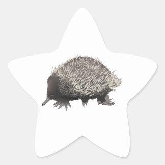 Echidna Star Sticker