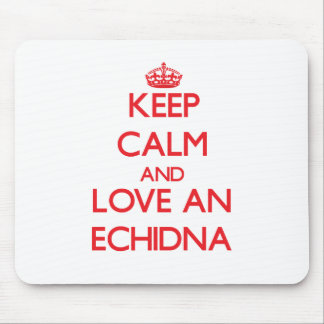 Echidna Mouse Pads