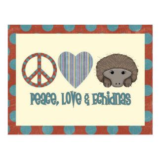 Echidnas del amor de la paz postal