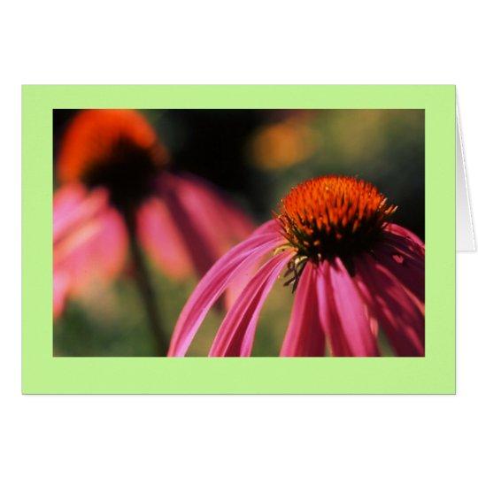 """Echinacea #5"" Card"