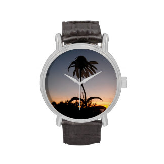 Echinacea at Sunset Wristwatches