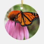 Echinacea con el ornamento de la mariposa de adorno de navidad