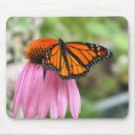 Echinacea con la mariposa de monarca Mousepad Tapete De Ratones