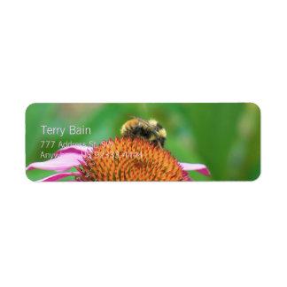 Echinacea de la abeja etiqueta de remitente