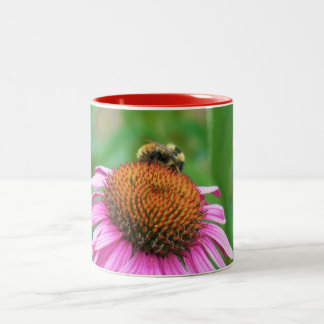 Echinacea de la abeja taza de dos tonos